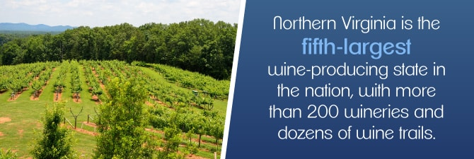 fifth largest wine producing state in the USA